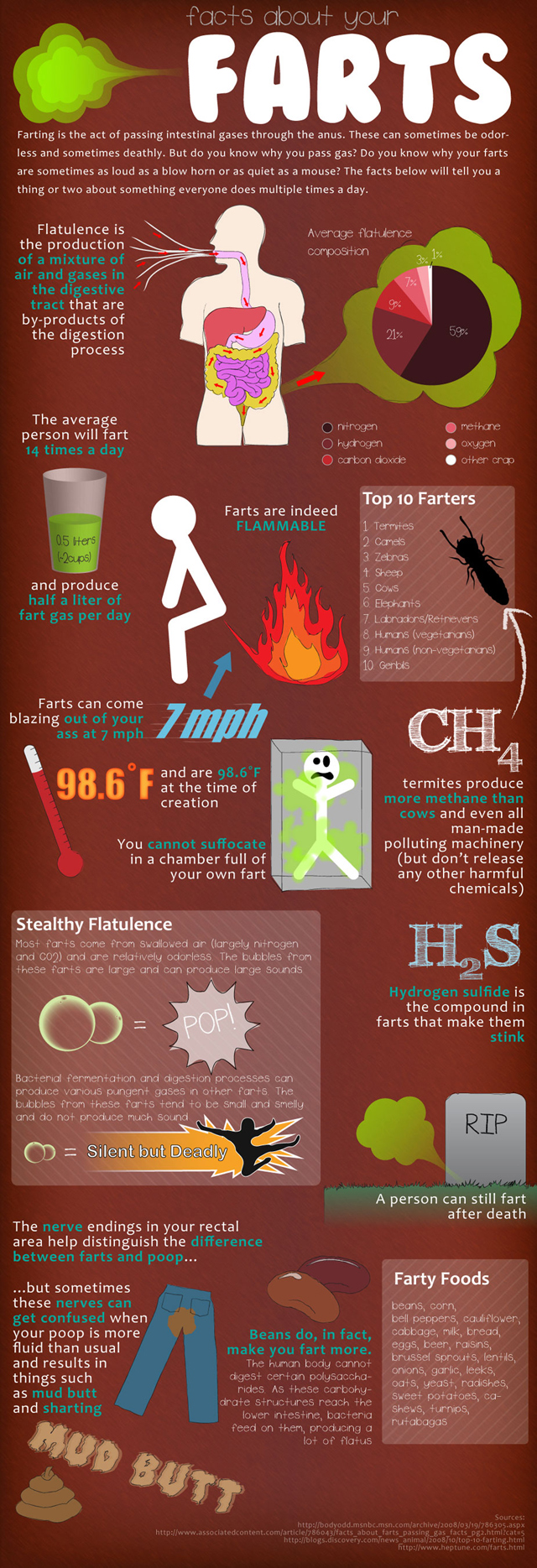 Flatulence Information - Facts About Your Farts