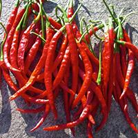 De Arbol pepper Scoville Heat Units
