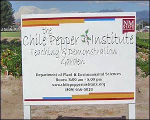 The Chile Pepper Institute Demonstration Garden