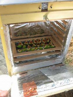 Electro-sun food dehydrator