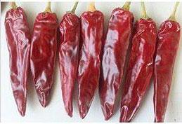 Tabiche Pepper Scoville Heat Units