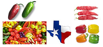 Texas Pepper Conference on November 12 - 13, 2009