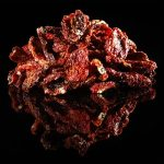 Blairs Offering Sundried Jolokia Peppers