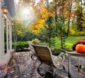 Fall sunshine on suburban patio and garden