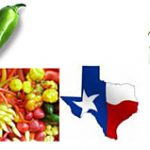 Texas Pepper Conference on November 12 – 13, 2009