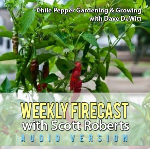 Weekly Firecast Podcast Episode #32 - Chile Pepper Gardening and Growing with Dave DeWitt