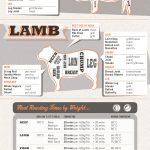 Super Mega-Awesome Kitchen Cheat Sheet Infographic