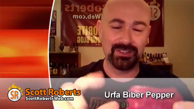 scott-roberts-urfa-biber-pepper-chile-test