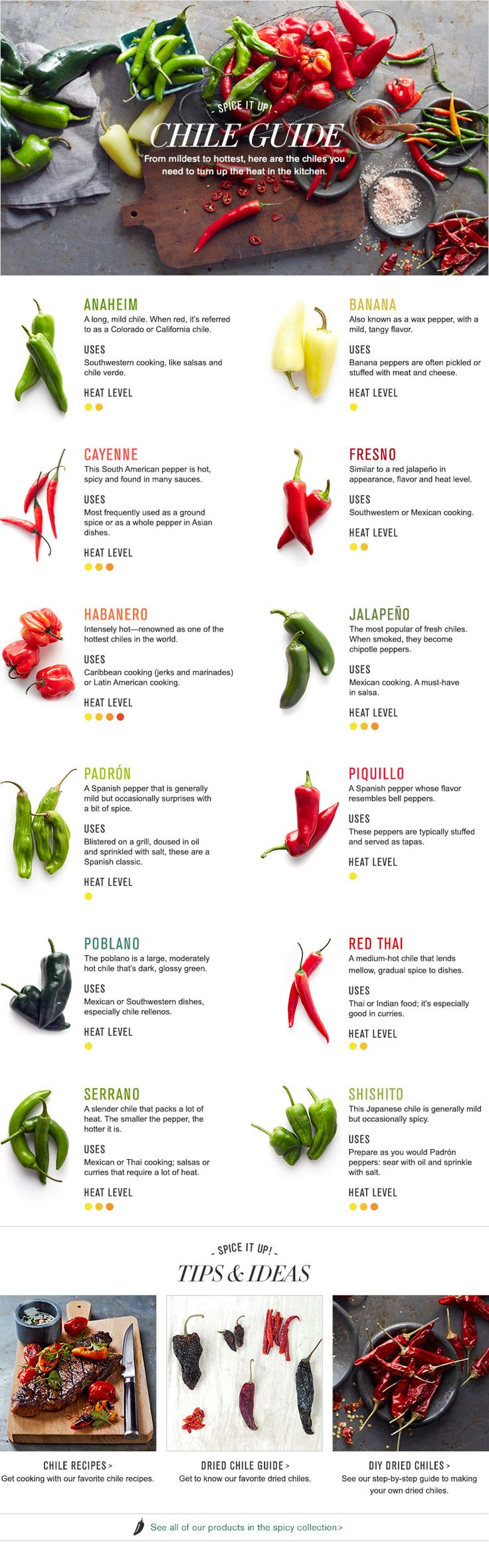 chile pepper guide infographic
