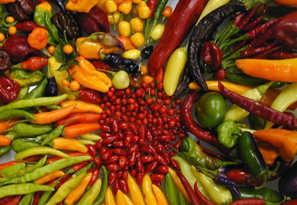 chile-pepper-varieties