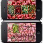 Chile Pepper iPhone App – ChilliFarm