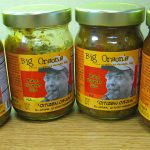 Review – Big Orson's Citizen Cajun Mango Habanero Salsas
