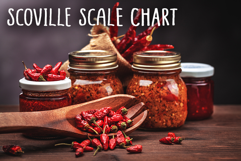scoville-scale-chart-home-page